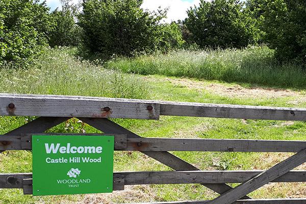 Castle Hill Wood Field Gate